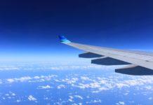 Fly udsigt